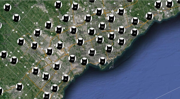 Map showing cats in the Greater Toronto Area